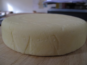 Tooting Gold cheddar cheese home cheese-making