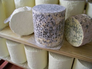 Hartington Creamery Cheese Stilton Peakland Blue White